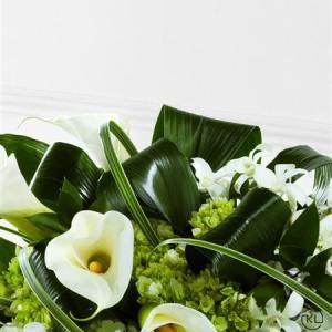 Callay-Lily-and-Orchid-Casket-Spray-3-Funeral-Flowers-London.-300x300