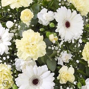 Carnation-and-Germini-Spray-3-Yellow-and-White-Funeral-Flowers-London-300x300