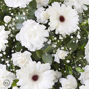 Carnation-and-Germini-Spray-White-3-Funeral-Flowers-London-300x300