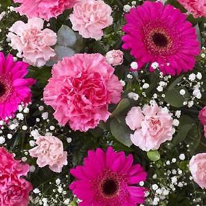 Carnation-and-Germini-Teardrop-Spray-Pink-3-Funeral-Flowers-London-300x300