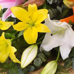 Lily-Casket-Spray-Mixed-Colours-4ft-3-Funeral-Flowers-London-300x300