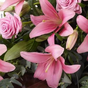 Lily-and-Rose-Casket-Spray-Pink-4ft-3-Funeral-Flowers-London-300x300