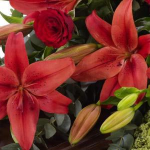 Lily-and-Rose-Casket-Spray-Red-4ft-3-Funeral-Flowers-London-300x300