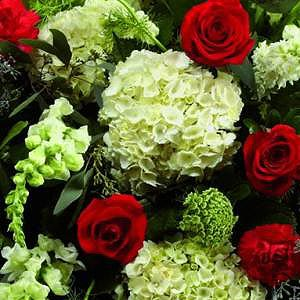 Mixed-Casket-Spray-Red-and-Green-3-Funeral-Flowers-London-300x300