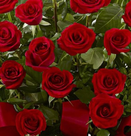 Red-Rose-Service-Arrangement-3-Funeral-Flowers-London