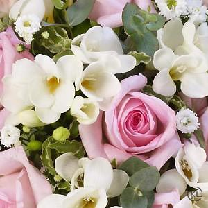 Scented-Posy-Pink-and-White-3-Funeral-Flowers-London-300x300