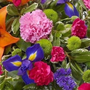 Vibrant-Lily-and-Iris-Teardrop-Spray-3-Funeral-Flowers-London-300x300